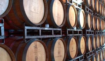 La Fabricación del Vino Blanco